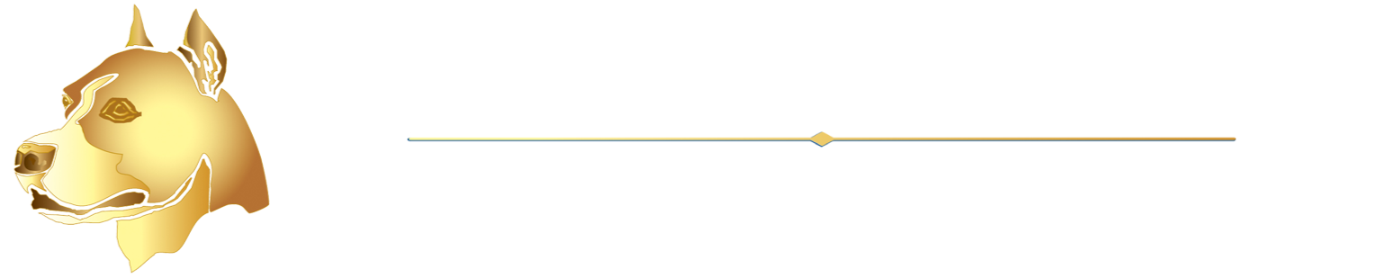 Logo (white) The PA Dog Bite Lawyer Jeffrey H. Penneys